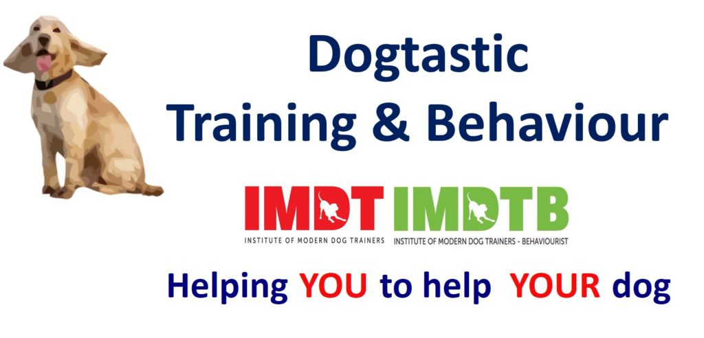 Dogtastic Logo with Strapline - no contact details